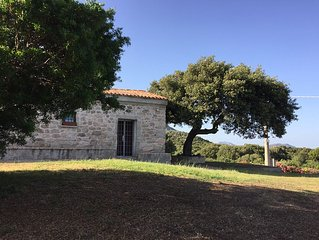 holiday home in Sardinia near Olbia typical country house