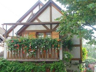 GITE à KINTZHEIM - Centre Alsace 3***  maison indépendante style  alsacien