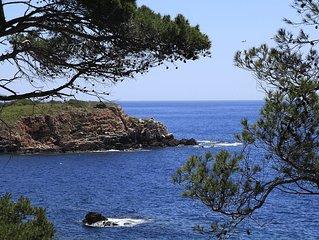 Bandol : Petit paradis en bord de mer