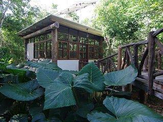 Casita Milagros - A Jungle Tree House