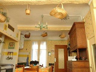 Picturesque Medieval, Provencal Village House (Lavender Alps)!