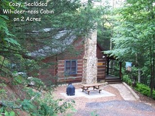 WIL-DEER-NESS CABIN- Secluded*Firepit*Hot Tub *River *Hammock *WiFi*Dog Friendly