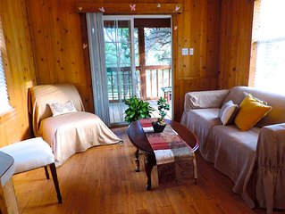 'Wildflowers' Cabin in Hill Country Mini Resort w/ Forest Riding  & Jogging