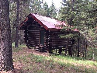 Log Cabin in the Tipi village