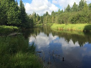 MAIN STREAM OF THE AuSABLE RIVER GRAYLING -- Cozy cabin sleeps up to 12 guests
