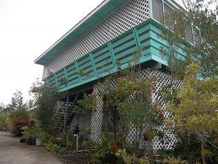 The Gluten Free House/The Aloha Room