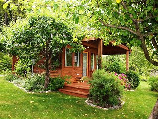Cottage is surrounded by apple trees, berries, grape vines & flowers.