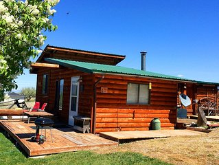 Wilderness Spirit Cabins 'Bear Cave' cabin-family friendly/sportsman paradise