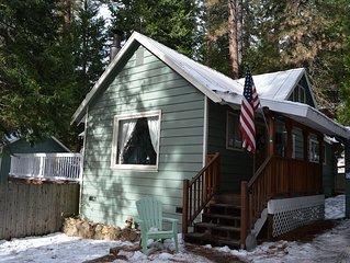 Cozy, Spacious, Family-Friendly Cabin