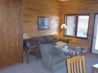 Warm Wood Panel Studio Condo With Full Kitchen And Bath. Fireplace. Deck