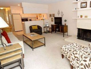 Cozy 2 bedroom, 3 blocks to gondola.  Includes Aspen Club & Spa passes.  210 Co