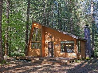 Cozy Mountain Retreat - at Mt. Rainier & Crystal