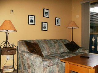 Cozy one Bedroom Ski Condo: Ski-out on to the Per