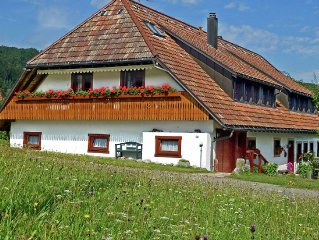 New and comfortable apartment in the south of the Black Forest