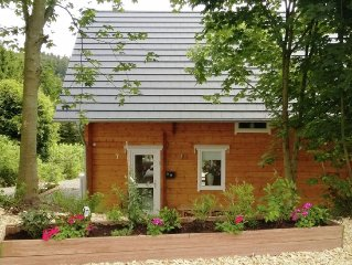 Detached wooden holiday house with sauna and garden close to Winterberg