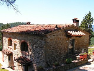 Attractive apartment in vineyard with swimming pool and views over Tuscany