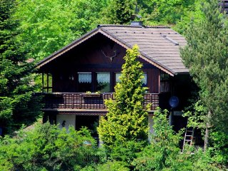 Alpine wooden chalet by the forest, full of charm and style, dogs welcome