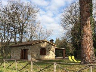 Montescudaio Il Gabbro Casa di campagna - Ferienhaus fur 6 Personen in Montescud