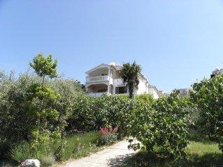 2582 A3(2) - Sveti Petar, Riviera Biograd, Kroatien