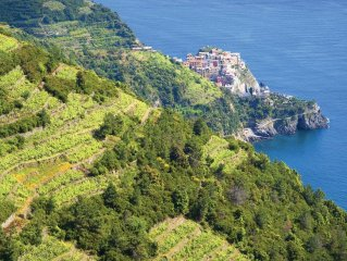 2 bedroom accommodation in Vernazza SP