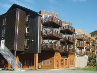 3 bedroom accommodation in Hemsedal