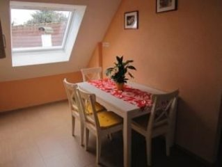 Apartment (4 - 6) B