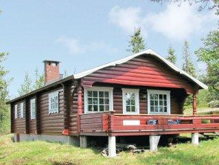 3 bedroom accommodation in Sälen