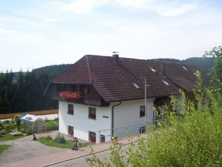 Apartment Herrischried for 2 - 4 people with 1 bedroom - Holiday