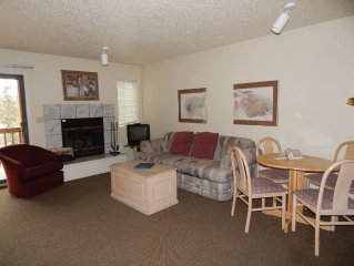 Perfect studio rental with interior updates, fireplace, private deck and flat s