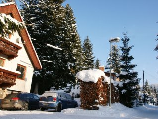 Spacious apartment in quiet spot in Harrachov. Walking distance from village an