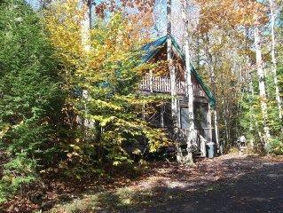 Cabin #11 at Pellerin Cove
