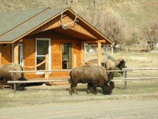 Electric Peak Cabin at Yellowstone Park