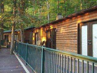 Cabin near Elkins WV, Hot Tub, Fantastic Views, Great Hiking & Biking