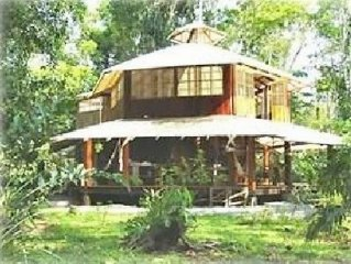 Welcome to La Bella Sirena! Close to the beach and in the rainforest!