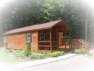 Charming Log Cabin in Sackets Harbor, NY... free internet!