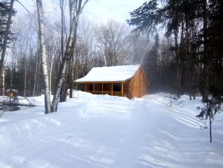 MLK in a Log Cabin -  FAMILY vacation OKEMO/GORE - Snowmobile VAST Trail access