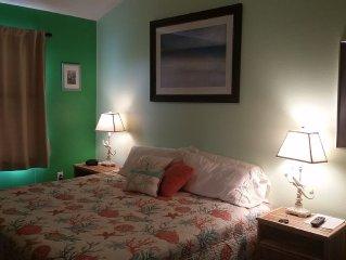 Beautiful ocean view apartment-King master bedroom-sleeps four.