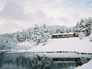 Mountain Villa, on 40 Acres, trout stream & private lake