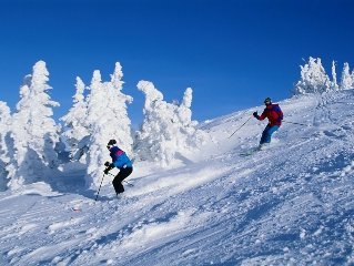 Sugarbush Slopeside Condo - Genuine ski  on ski off