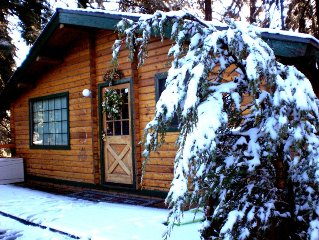 Tao cabin #4. ONLY 2 miles to Snow Valley Ski Resort. Online booking available.