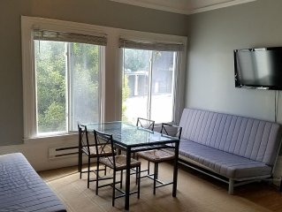 One Bedroom apt in the center of SF.