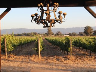Romantic Get Away on Organic Vineyard & short stroll to downtown Los Olivos!