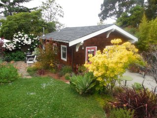 Sunny Garden Studio in great North Berkeley location