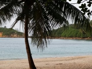 Tropical Oasis- Dates available?  Book it online! Just hit Request to book now!
