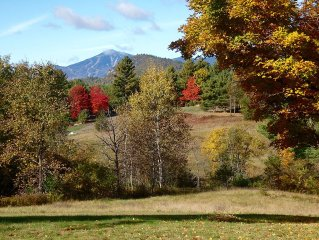 Secluded Cottage With Amazing Views of Whiteface Mountain and High Peaks!