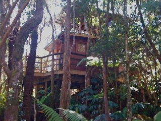 Exotic Treehouse at Kilauea Volcano ~ Hawaii Volcanoes National Park