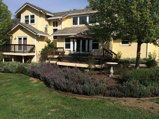 Gorgeous House with Cherry Orchard in Sierra Foothills!