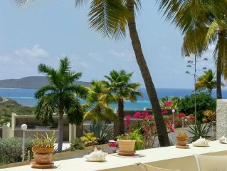 Tropical Escape! Condo on the Golf course-Ocean View - Beach-Pool-Tennis