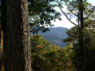 Charming Cabin with Amazing Views! Call May/June specials!