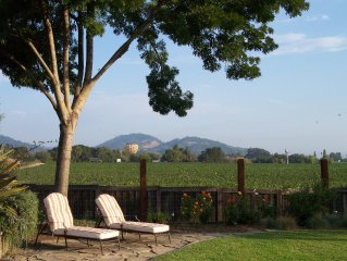 Spacious 4 Bedroom 3 Bath Vineyard View with Spa in a  Lovely Garden Setting